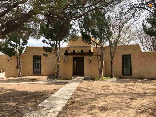 3 Robins Nest Place, Roswell, NM 88201 (MLS #20191356) :: Rafter Cross Realty