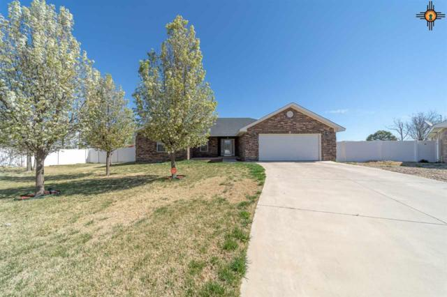 2313 Marvin Hass, Clovis, NM 88101 (MLS #20191526) :: Rafter Cross Realty