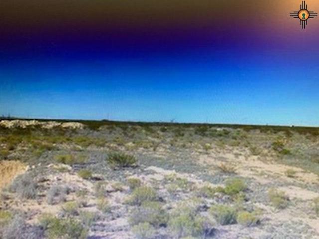 S Wildfire Road, Artesia, NM 88210 (MLS #20191579) :: Rafter Cross Realty