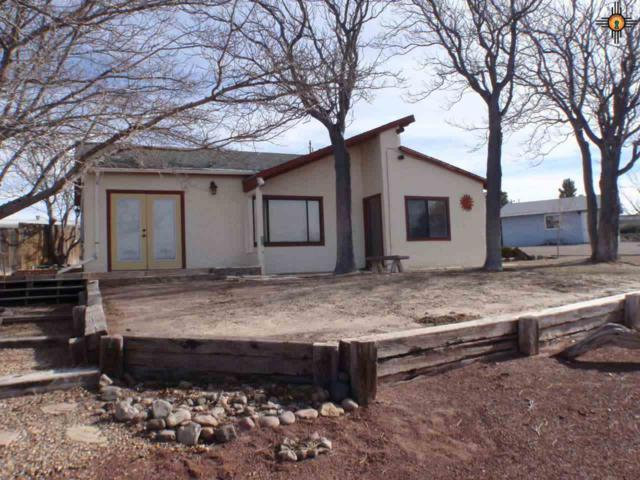 502 Pike Rd, Elephant Butte, NM 87935 (MLS #20191630) :: Rafter Cross Realty