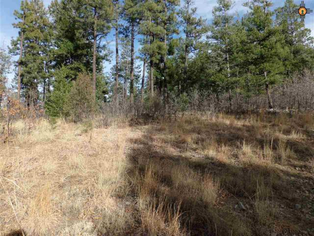 Tr 10-D Lower Canyon Road, Gallinas, NM 87731 (MLS #20191652) :: Rafter Cross Realty