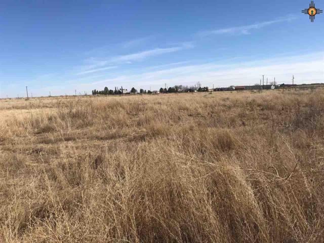 7314 Kornegay, Hobbs, NM 88240 (MLS #20191666) :: Rafter Cross Realty
