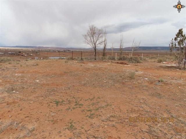23 Margrets Place, Milan, NM 87021 (MLS #20191684) :: Rafter Cross Realty