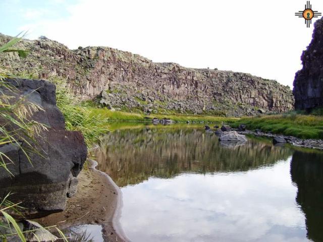 Rio Grande Gorge Ranch, Amalia, CO 81134 (MLS #20191842) :: The Bridges Team with Keller Williams Realty
