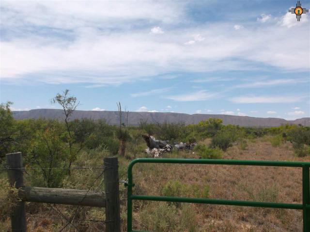 000 Washington Ranch Road, Carlsbad, NM 88220 (MLS #20192082) :: Rafter Cross Realty