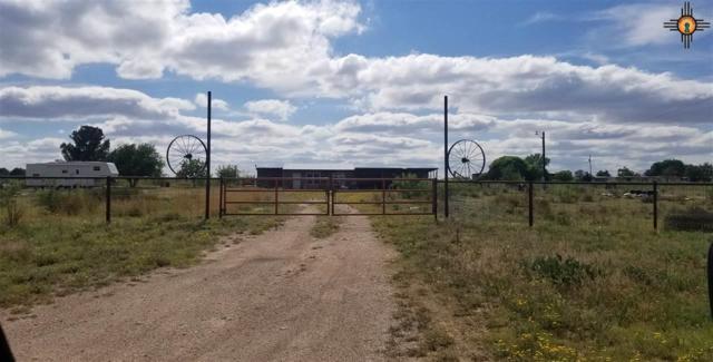 1608 S 25th, Lovington, NM 88260 (MLS #20192205) :: Rafter Cross Realty