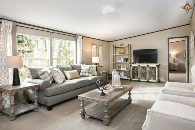 914 Butternut Street, Carlsbad, NM 88220 (MLS #20192324) :: Rafter Cross Realty