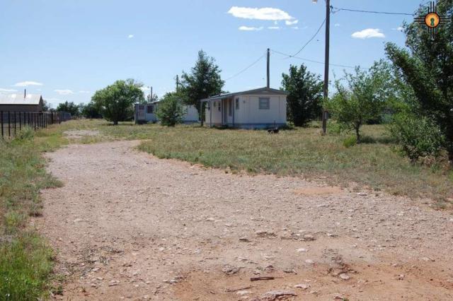 294 S Roosevelt Rd R, Portales, NM 88130 (MLS #20192385) :: Rafter Cross Realty