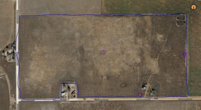 2088 S Rr 3, Portales, NM 88130 (MLS #20192777) :: Rafter Cross Realty