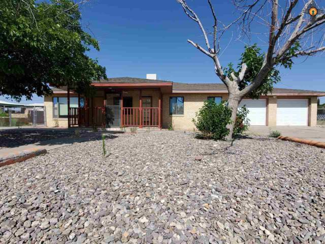 904 Juniper, Truth Or Consequences, NM 87901 (MLS #20193000) :: Rafter Cross Realty