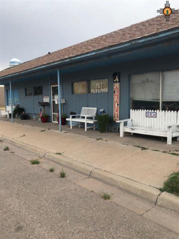 514 W Ave D, Lovington, NM 88260 (MLS #20193290) :: Rafter Cross Realty