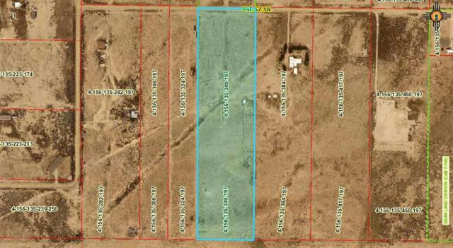 E of 1225 Salazar Road, Carlsbad, NM 88220 (MLS #20193418) :: Rafter Cross Realty