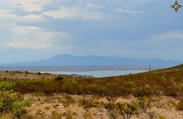 Lot 42 Rancho Del Lago, Truth Or Consequences, NM 87901 (MLS #20193436) :: Rafter Cross Realty