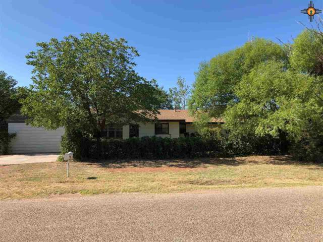 1791 S Roosevelt Road 2 Ln, Portales, NM 88130 (MLS #20193859) :: Rafter Cross Realty