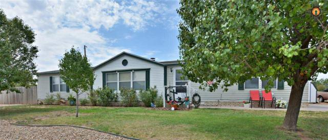 309 Kilgore, Portales, NM 88130 (MLS #20193902) :: Rafter Cross Realty