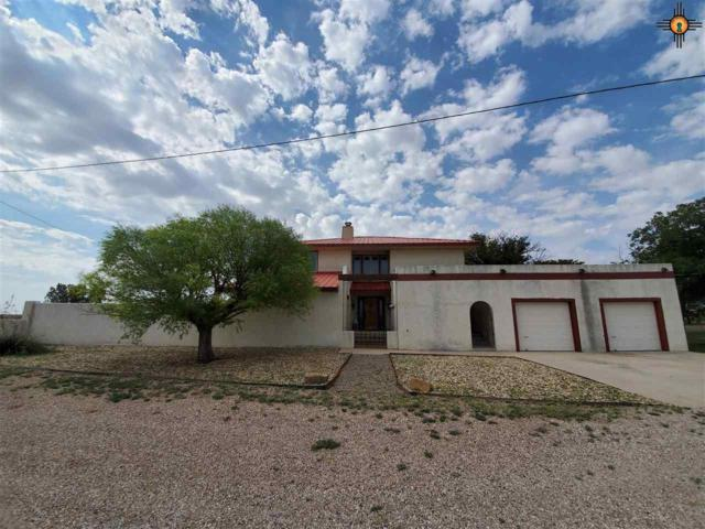 46 Gene Rd, Lovington, NM 88260 (MLS #20193956) :: Rafter Cross Realty
