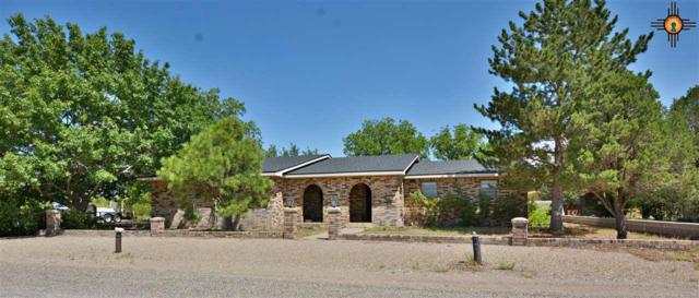 2113 2nd, Portales, NM 88130 (MLS #20194027) :: Rafter Cross Realty