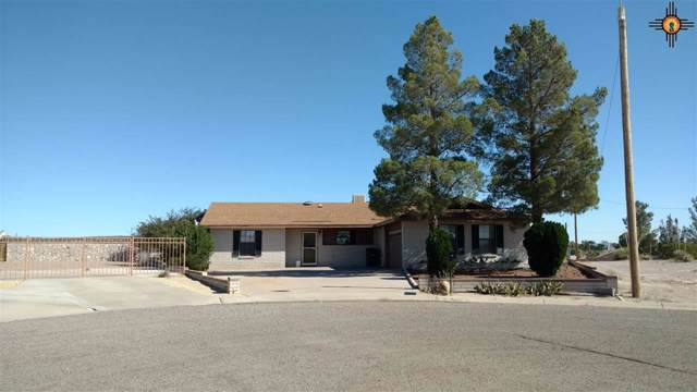 1015 Locust, Truth Or Consequences, NM 87901 (MLS #20195036) :: Rafter Cross Realty