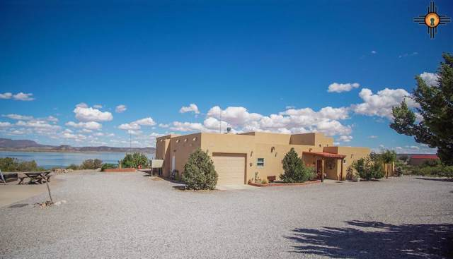 307 Catfish Road, Elephant Butte, NM 87935 (MLS #20195069) :: Rafter Cross Realty