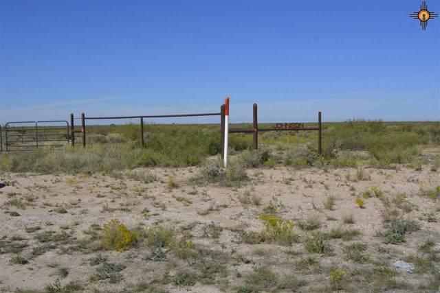 0000 E Anita Rd, Lake Arthur, NM 88253 (MLS #20195178) :: Rafter Cross Realty