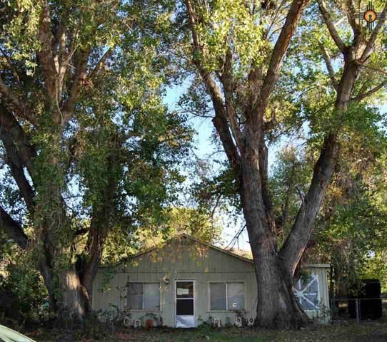 10625 Hwy 152, Hillsboro, NM 88042 (MLS #20195191) :: Rafter Cross Realty