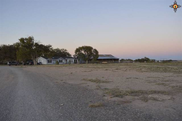 68 W Compress Rd, Artesia, NM 88210 (MLS #20195399) :: Rafter Cross Realty