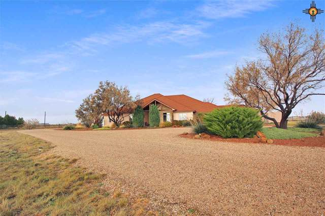 5333 N Baggett, Hobbs, NM 88242 (MLS #20195501) :: Rafter Cross Realty