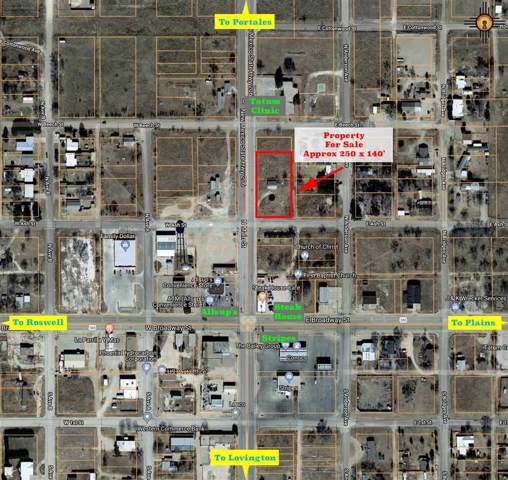 000 N Main St, Tatum, NM 88267 (MLS #20195531) :: Rafter Cross Realty