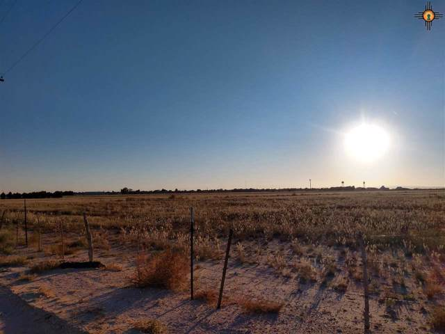 113 E Nymeyer Rd, Carlsbad, NM 88220 (MLS #20195598) :: Rafter Cross Realty