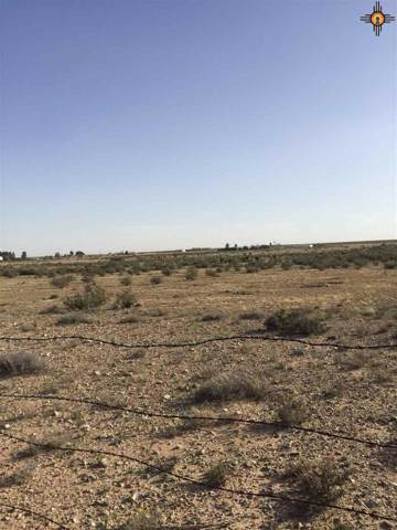 S of 19 Colbert Ave, Artesia, NM 88210 (MLS #20195795) :: Rafter Cross Realty