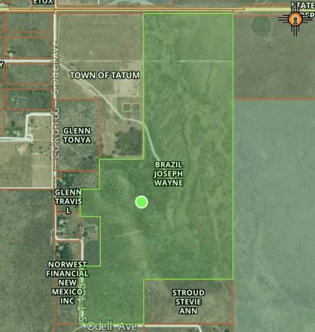 162 Acres Plains Hwy, Tatum, NM 88267 (MLS #20195876) :: Rafter Cross Realty