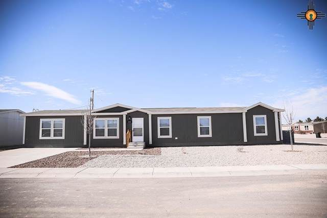 4205 Magnolia, Carlsbad, NM 88220 (MLS #20195997) :: Rafter Cross Realty