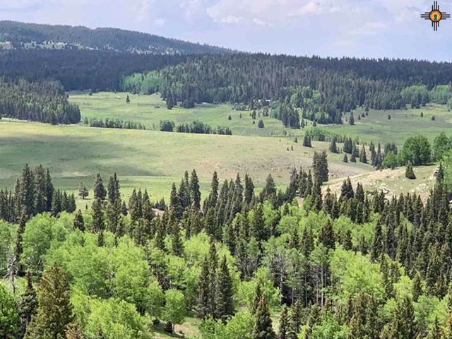TBA State Forest Road 93, Chama, NM 87577 (MLS #20200118) :: The Bridges Team with Keller Williams Realty