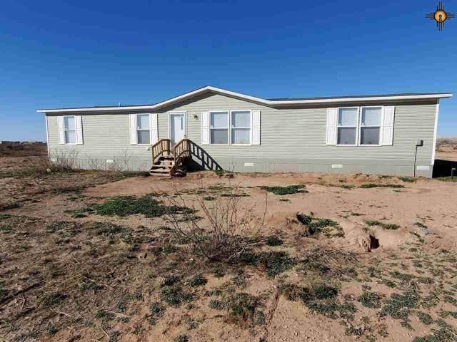 650 Jicarilla Road, Hagerman, NM 88232 (MLS #20200168) :: Rafter Cross Realty