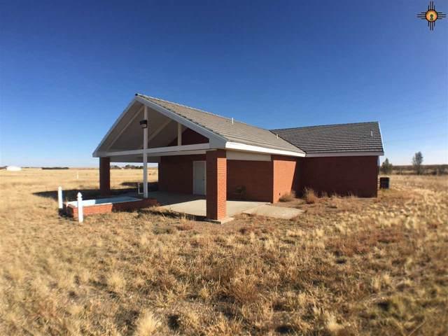 41679 Us Highway 70, Portales, NM 88130 (MLS #20200215) :: Rafter Cross Realty
