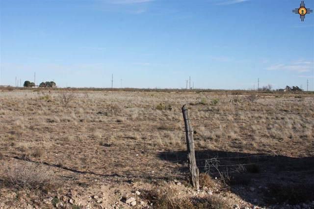 Tract 3 Western Trails, Lovington, NM 88260 (MLS #20200451) :: Rafter Cross Realty