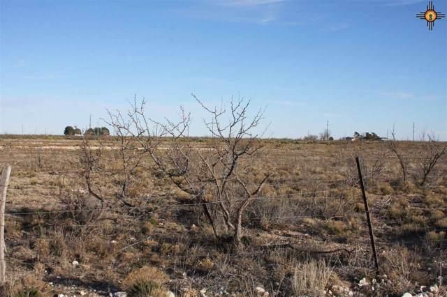 Tact 4 Western Trails, Lovington, NM 88260 (MLS #20200452) :: Rafter Cross Realty