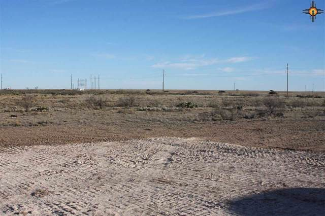 Tract 5 Western Trails, Lovington, NM 88260 (MLS #20200453) :: Rafter Cross Realty