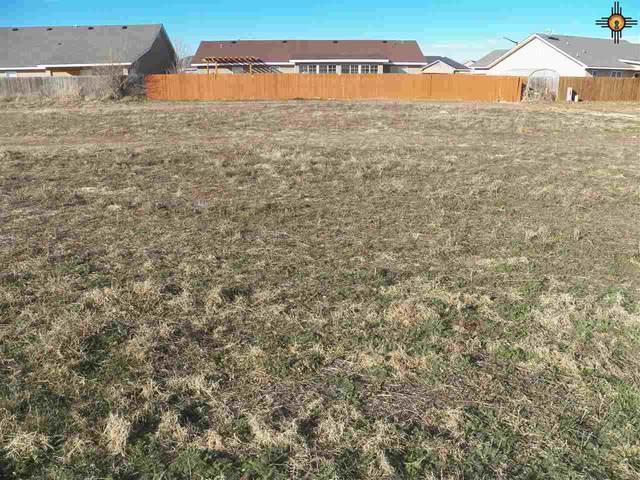 3208 E 14th, Clovis, NM 88101 (MLS #20200666) :: Rafter Cross Realty
