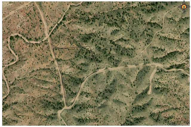 River Ranches Pl, Fort Sumner, NM 88119 (MLS #20201014) :: The Bridges Team with Keller Williams Realty