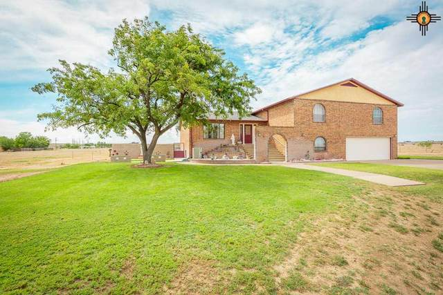 4905 Thunderbird Ln, Roswell, NM 88203 (MLS #20201153) :: Rafter Cross Realty