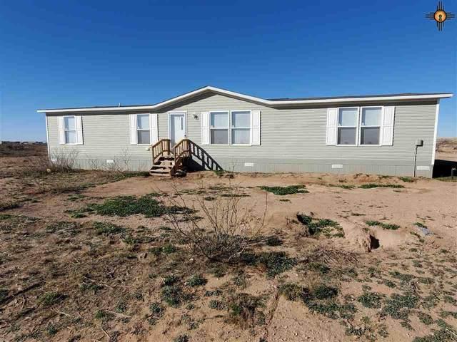 650 Jicarilla Rd, Hagerman, NM 88232 (MLS #20201401) :: Rafter Cross Realty