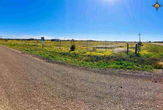 7 Wildfire Dr, Artesia, NM 88210 (MLS #20201460) :: Rafter Cross Realty
