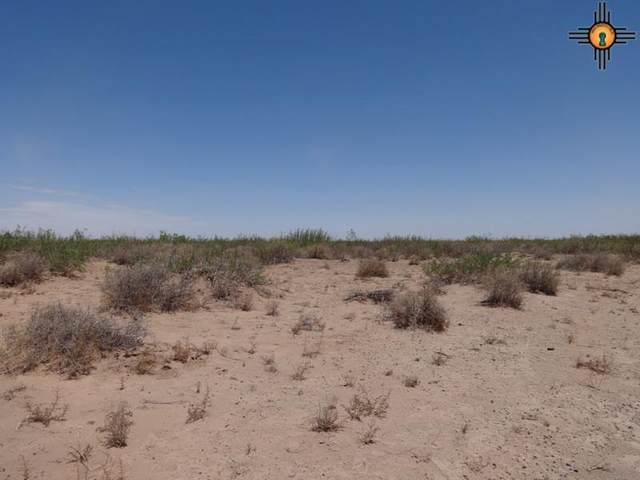 00 Illinois And Hawaii, Deming, NM 88030 (MLS #20201538) :: The Bridges Team with Keller Williams Realty