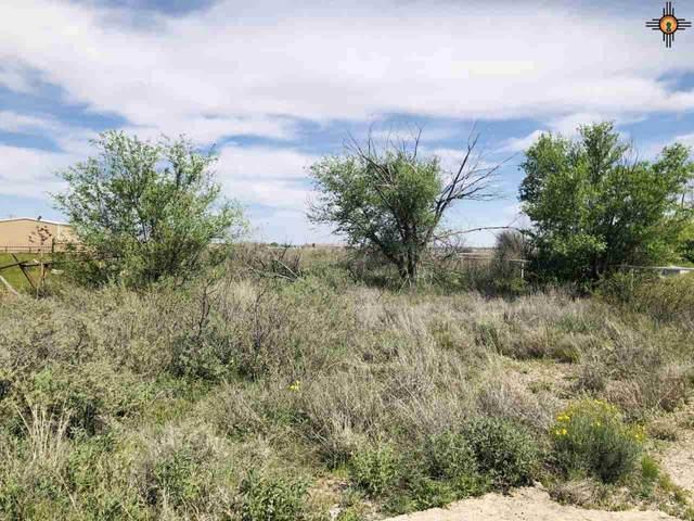 509 S 41st St, Artesia, NM 88210 (MLS #20201612) :: Rafter Cross Realty