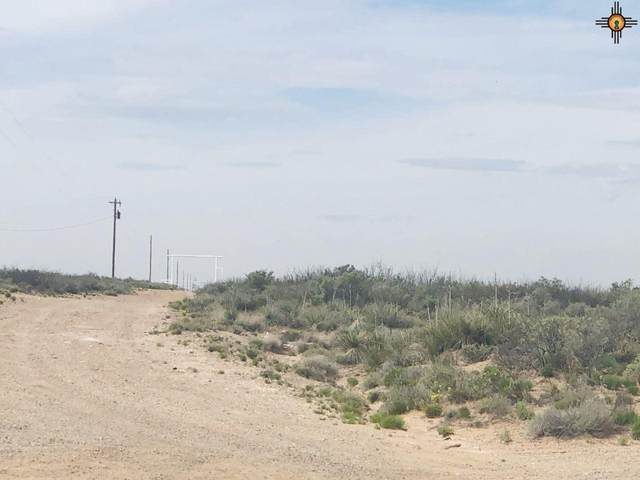 0000 Buffalo Valley Road, Lake Arthur, NM 88253 (MLS #20201678) :: Rafter Cross Realty