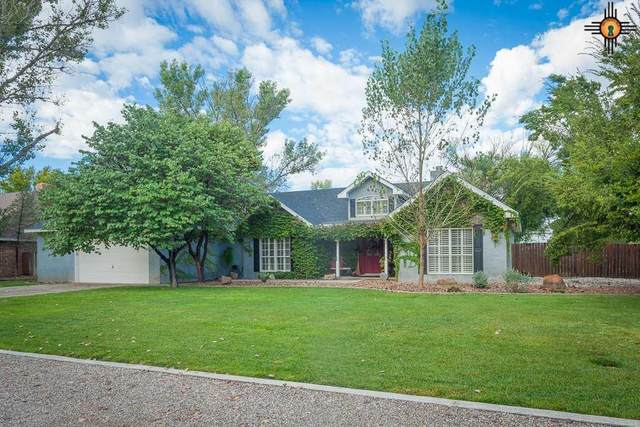 2510 N Nevada Ave, Roswell, NM 88201 (MLS #20201992) :: Rafter Cross Realty