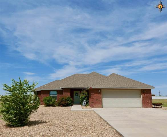 142 Crest Point, Portales, NM 88130 (MLS #20202134) :: Rafter Cross Realty