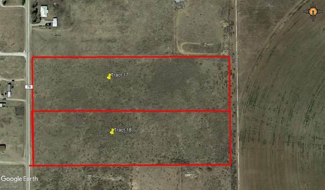 14000 N Thorp, Lovington, NM 88260 (MLS #20202173) :: Rafter Cross Realty