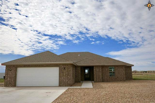 105 Crest Point, Portales, NM 88130 (MLS #20202240) :: Rafter Cross Realty